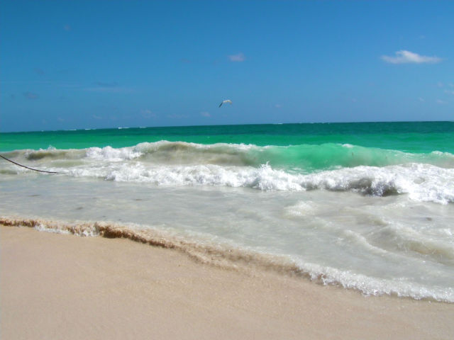 Tulum White Sand Blue Water Beach Riviera Maya Mexico Vacation Beautiful Paradise